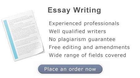 Essay and coursework writing service
